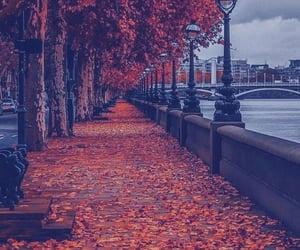 autumn, fall, and lockscreen image