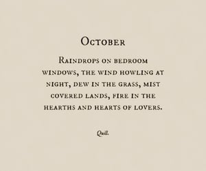 autumn, fall, and words image