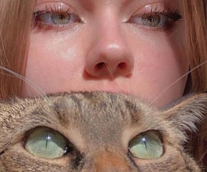 cat, aesthetic, and girl image