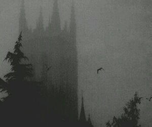 aesthetic, black and white, and fear image