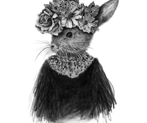 black and white and rabbit image