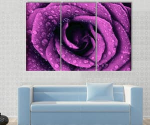 dew drops, dark rose, and canvas wall art image