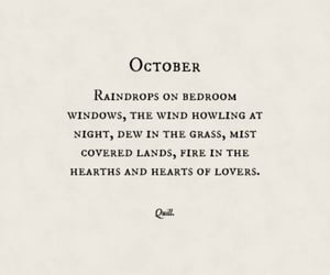 quotes, autumn, and book image