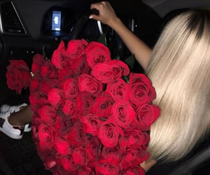 roses, girl, and blonde image