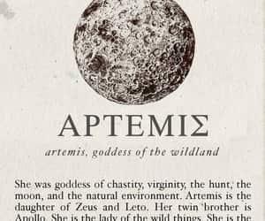 advice, experience, and artemis image