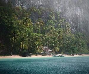 beach, 🌴, and Island image