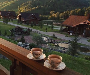 nature, place, and tea image