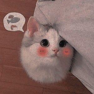 gatito, gato, and icon image