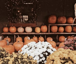 atmosphere, autumn, and candles image