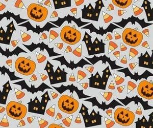 Halloween, pumpkin, and bats image