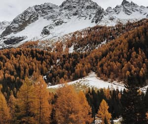 autumn, mountains, and snow image