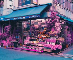 aesthetic, city, and flower image