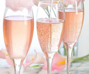 champagne, drinks, and rose image