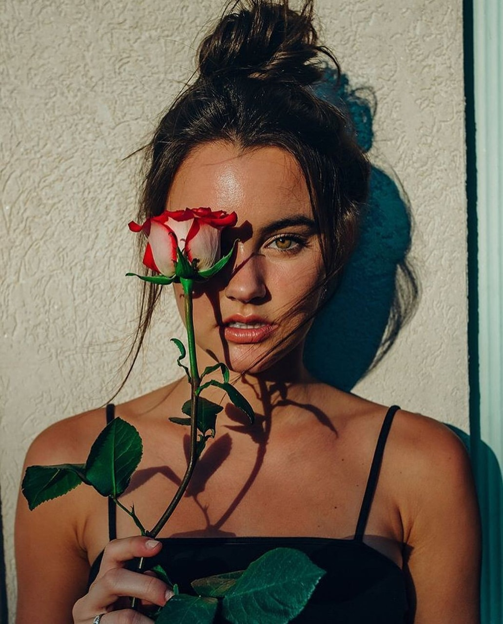 aesthetic, rose, and pinterest image