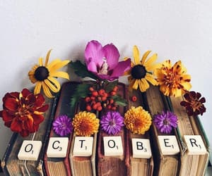 autumn, october, and love image