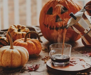 autumn, aesthetic, and pumpkins image
