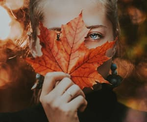 aesthetic, creative, and fall image