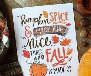 pumpkin, pumpkin spice, and autumn image