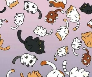 cat, kittys, and wallpaper image