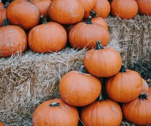 autumn, aesthetic, and Halloween image