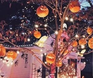 Halloween, pumpkin, and lights image