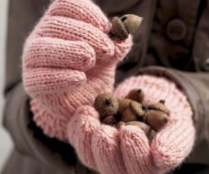 acorns, gloves, and autumn image
