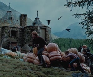 fall, harry potter, and spooky image