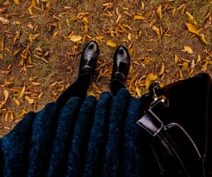 autumn, boots, and college image