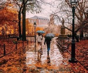 autumn, fall, and rainy day image