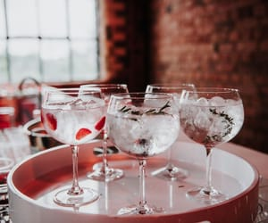 drinks and gin image