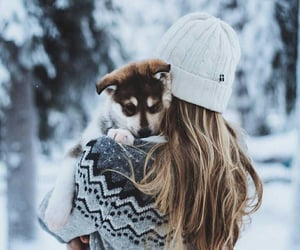 snow, winter, and dog image