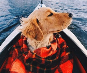 autumn, blankets, and canoe image
