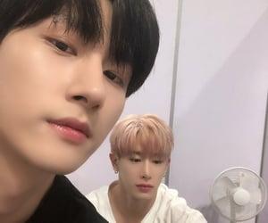 i.m, changkyun, and wonho image