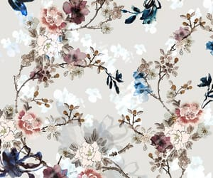 background, blossom, and botanical image