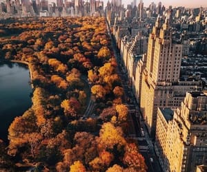 city, autumn, and new york image
