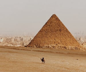 pyramid, egypt, and camel image