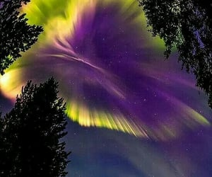 colourfull, night, and sky image