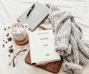 accesories, autumn, and books image