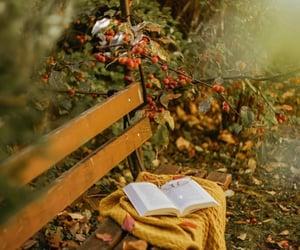 autumn, cinammon, and autumn vibes image