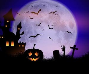 apocalypse, black cat, and halloween costume image