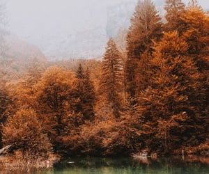 autumn, blue water, and colors image