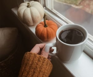 drink, autumn, and coffee image