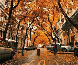 aesthetic, autumn, and music image