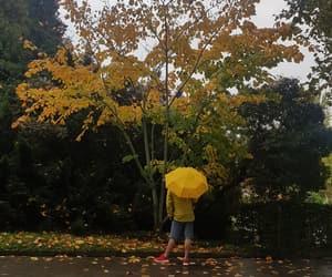 aesthetic, tree, and yellow image