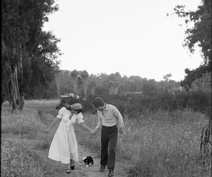 couple, field, and lovers image