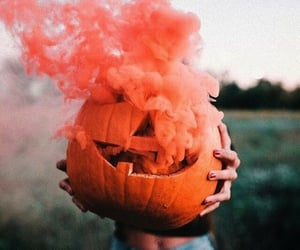 pumpkin and beauty image