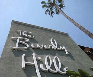 Beverly Hills, travel, and tropical image