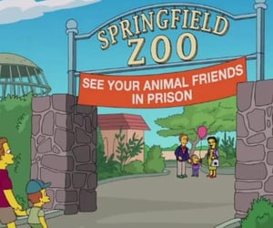 animals, prison, and simpsons image