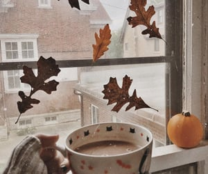 aesthetic, autumn, and cups image