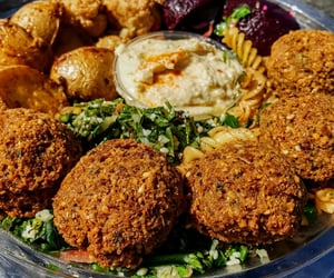 delicious and falafel image